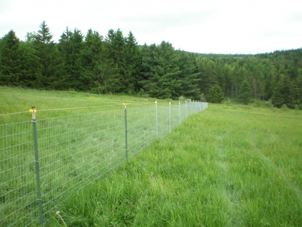 Woven Wire Round Hill Fence